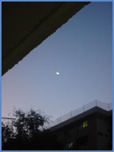 20070116dawn1s