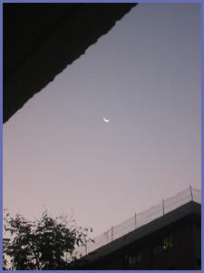 20070116dawn2s