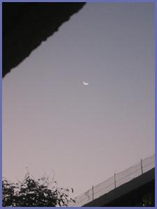 20070116dawn3s