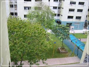 viewfrombedroom20030309s