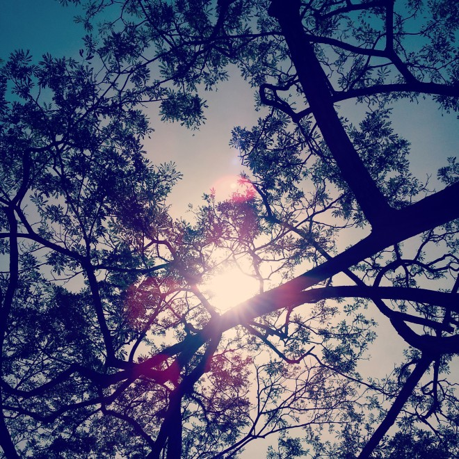 As I look up to the sky ...